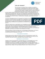2_9_1_ES_fundraising-booklet.pdf