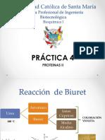 BIO Práctica 4.pptx