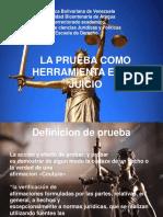 EXPOSICION DERECHO PROBATORIO.pptx