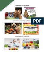 La Dimensión de La Nutrición