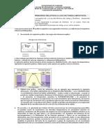 TALLER UNIDAD Factores Limitantes (1)