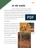 COLOR DE SUELO12.docx
