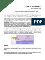 02. Clasificacion FIGO