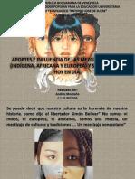 APORTES E INFLUENCIAS DE LA MEZCLA DE RAZAS