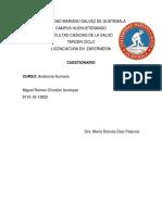 Cuestionario Miguel Romeo Chivalan.docx