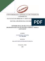 Informe Final de Practicas Pre Profesionales i Pier Cueva