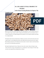 Beans Farming and Agricultural Prospect in Nigeria