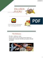 Filo Mollusca - Introdução 2019.pdf