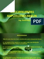 ÑOCCAYKUPAPAS KAPUHUASHKANKUN