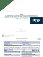 Formatos de Plan de Academia y Plan Clase