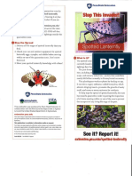SP Lanternfly Pamphlet