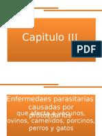 3 Protozoarios.pptx