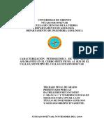 036-Tesis-Caracterizacion petroquimica de las rocas.pdf