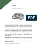 AP3  2007-1 protostomados sem gabarito-converted-converted.pdf