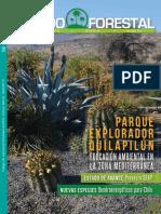 Revista-Mundo-Forestal-N°29