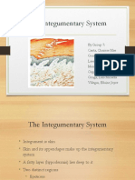 The Integumentary System and Tissue