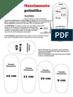 MOLDE PALMILHA - YARINHA NASCIMENTO.pdf · versão 15vgkflvltfol.pdf