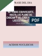 ACIDO NUCLEICOS