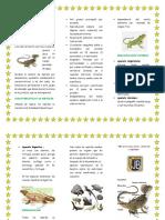 Los Reptiles1