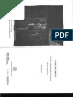 Christopher Britt Ensayo_como_instrumento_de_regeneracion.pdf