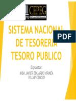 Sistema Nacional Tesoreria Final