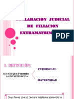 Declaracion Judicial de Filiacion Extramatrimonial 24