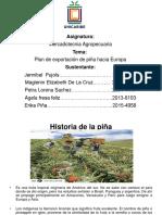 Presentacion de La Exportacion de Piña