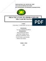 206611885 Guia Practica n 02 Elaboracion Nectar Mango