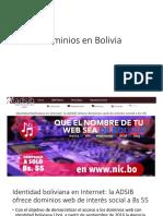 Dominios en Bolivia.pptx