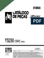 YS250'06 (1S41) FAZER_Revisão03.pdf