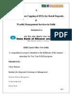Summer Internship Project on Wealth Management