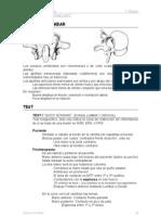 Quiromasaje - Osteopatia Lumbar