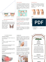 triptico de artritiris 111