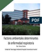 Torres_Cerino_factores.pdf
