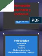 Orientación Vocacional-1.pptx