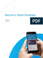 Rapid Developer - Module 1
