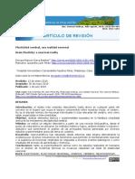 plasticidad.pdf