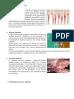 Enfermedades del sistema muscular.docx