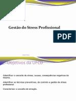 Gestao Stress Profissional