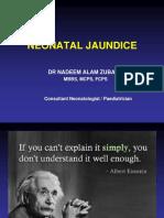 NEONATAL+JAUNDICE.ppt