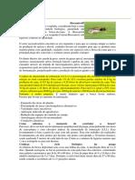 Cotésia Biocontrol