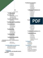 Clasificarea antibioticelor.docx