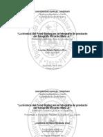 Pedroza-Lourdes.pdf