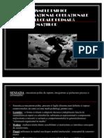 Mecanisme Psihice Cognitive_Legile Senzatiei