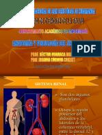 LOS RIÑONES.pdf
