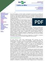 cruz et al 2010.pdf