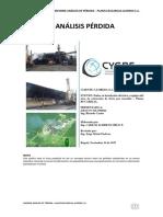 Informe Tecnico Bucarelia Nov 9 - 2017 v2
