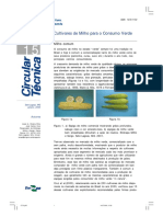 filho e cruz 2002.pdf