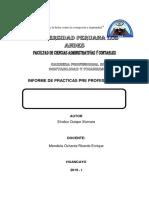 INFORME-RODRIGO-PRACTICAS I.docx
