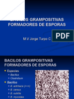 3-GRAM POSIT-ESPORULADOS.ppt